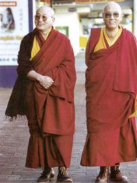 The two Rinpoches, Lhagon Tulku and Thupten Tulku: click for large version